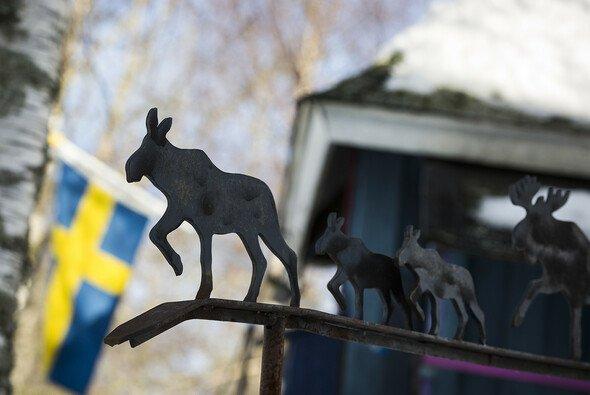 Die Rallye Schweden ist das einzige reine Schneevent in der WRC - Foto: Volkswagen Motorsport