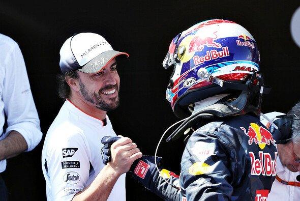 Fernando Alonso 2019 Teamkollege von Max Verstappen? Red-Bull-Teamchef Christian Horner wäre gar nicht begeistert - Foto: Red Bull
