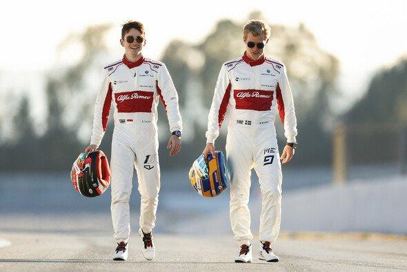 Charles Leclerc ist für Marcus Ericsson der beste Teamkollege seines Lebens, aber nicht unnerreichbar - Foto: Sauber