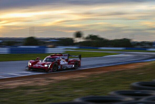 Felipe Nasr und Pipo Derani führen einen Cadillac-Dreifachsieg in Sebring an - Foto: LAT Images
