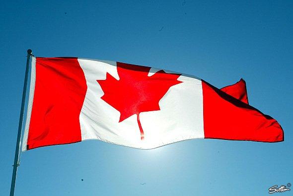 Kanada bemüht sich um die Ausrichtung eines ePrix - Foto: Sutton