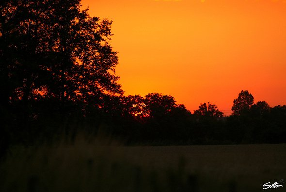 Sonnenuntergang am Ende der F1-Welt. - Foto: Sutton