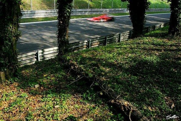 Ferrari fuhr im Wald... - Foto: Sutton