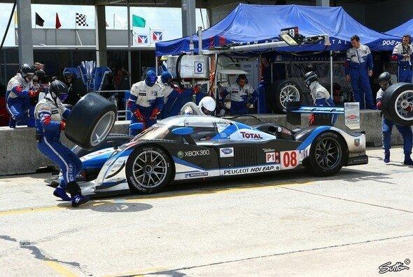 Die Peugeots sicherten sich geschlossen Reihe eins. - Foto: Sutton
