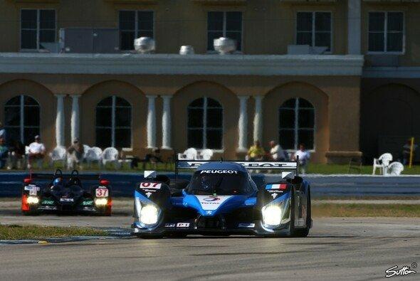 Ungefährdeter Sieg für Peugeot beim Rennen in Sebring. - Foto: Sutton