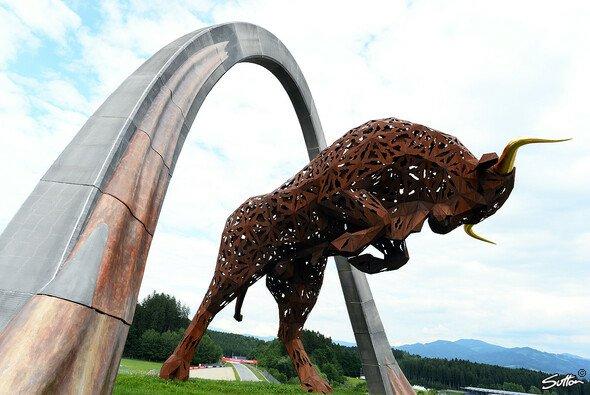 Die Formel 1 gastiert im Reich des Bullen