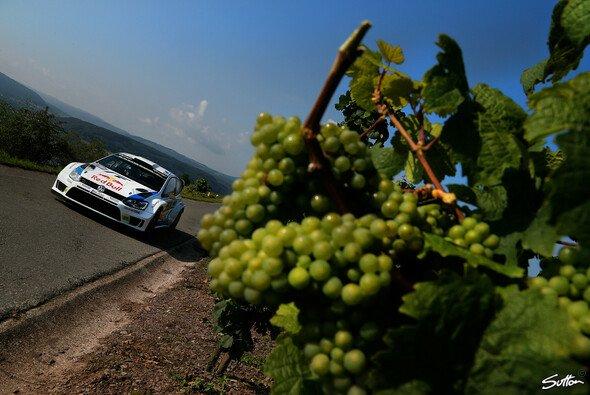 Die engen Wege in den Weinbergen werden ebenso geliebt wie gefürchtet - Foto: Sutton