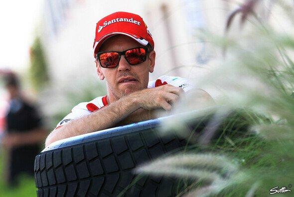 Hat Sebastian Vettel das Zeug zum Dschungelkönig? - Foto: Sutton