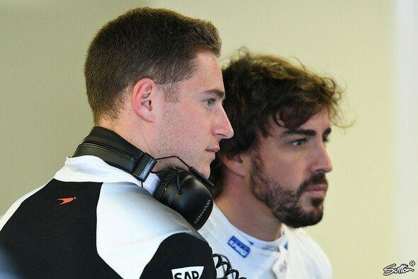 Stoffel Vandoorne gilt als aussichtsreicher Kandidat für das Cockpit bei McLaren - Foto: Sutton