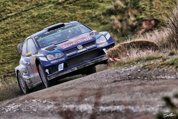 Volkswagen steigt wohl aus der WRC aus - Foto: Sutton