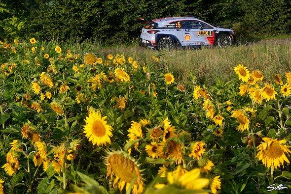 Thierry Neuville war im Shakedown der Schnellste - Foto: Sutton