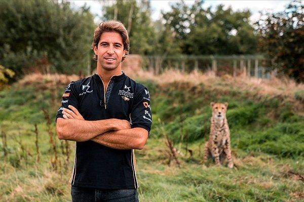 Formel E: Felix da Costa wechselt von BMW zu Techeetah