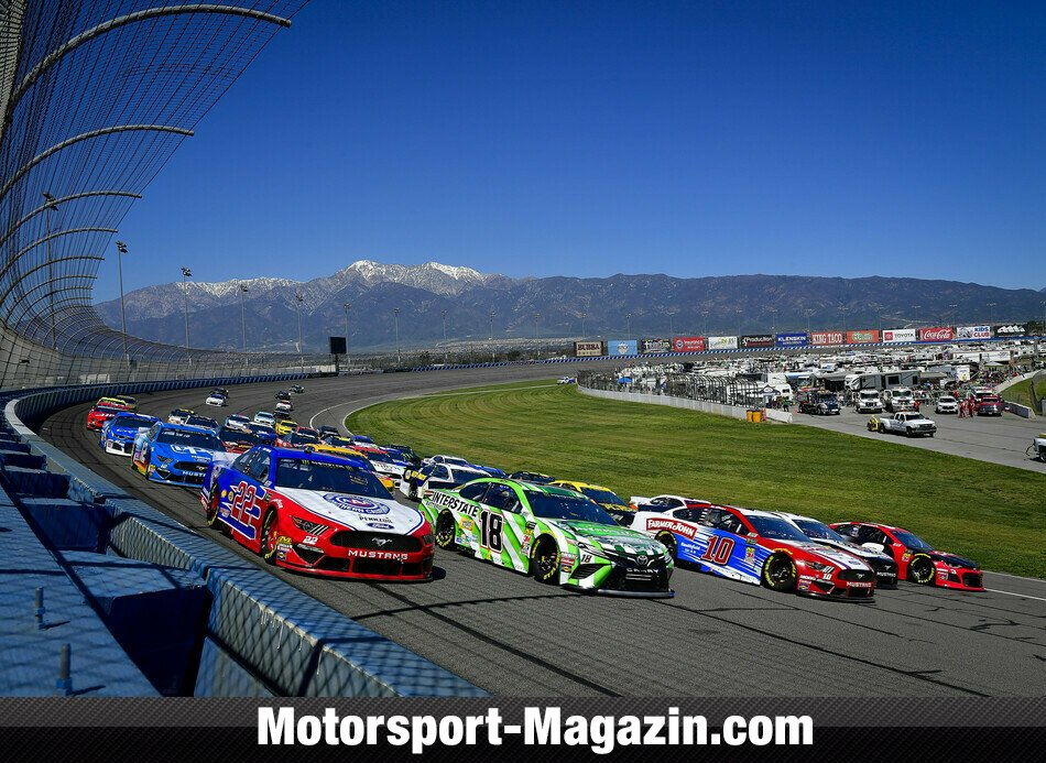 NASCAR 2019, Auto Club 400, Fontana, Kalifornien, Austin Dillon, Richard Childress Racing, Bild: LAT Images